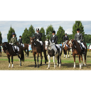 Senior Dressage Team